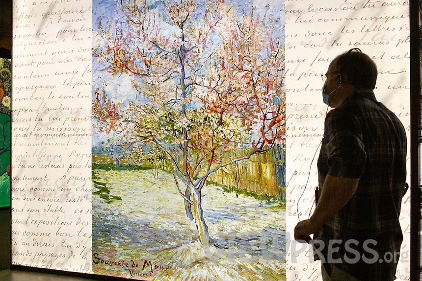"LISBON, PORTUGAL - MAY 31: A visitor wearing a face mask attends the ""Meet Vicent Van Gogh"" exhibition as the spread of the (COVID-19) continues in Lisbon, on May 31, 2020. <br /> Meet Vincent van Gogh is an interactive experience, to get to know Lisbon, through which it proposes to make Vincent's art accessible to as many people as possible.<br /> (Photo by Luis Boza/VIEWpress via Getty Images)"