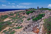 Desert landscape, Netherland Antilles, Caribbean, Atlantic, Bonaire, Bonaire, Washington Slagbaai National Park