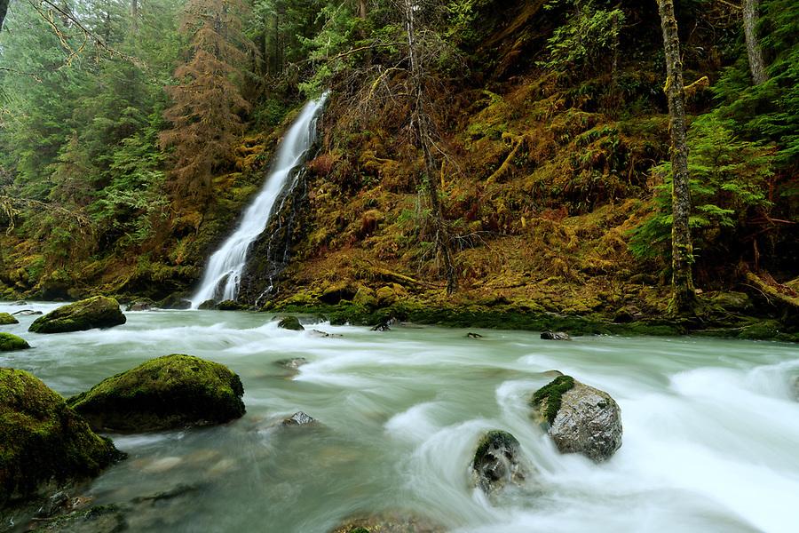 Un-named creek falls over waterfall and into Boulder River, Boulder River Wilderness, Central Cascades, Washington, USA