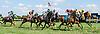 Fringe Benefits winning at Delaware Park on 8/15/16