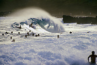 Large group of body surfers and body boarders on large breaking wave at Sandy Beach on Oahu east shore Kaiwi coastline on sunny day in Hawaii.