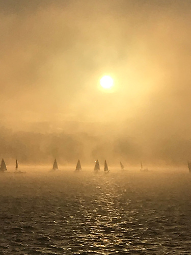 Laser dinghies in the winter sunshine and mist at Dun Laoghaire Harbour Photo: Janet Thompson