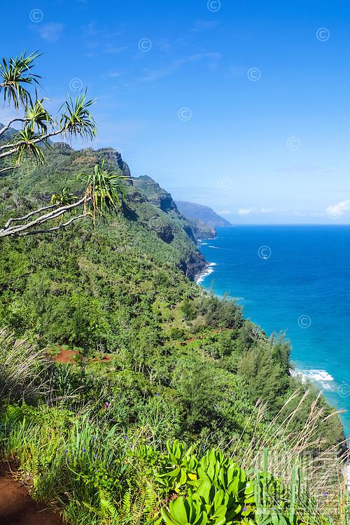 A view of Kaua'i's Na Pali coastline from the Kalalau Trail.