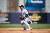 New York Yankees second baseman Gleyber Torres (25) during a Grapefruit League Spring Training game against the Toronto Blue Jays on February 25, 2019 at George M. Steinbrenner Field in Tampa, Florida.  Yankees defeated the Blue Jays 3-0.  (Mike Janes/Four Seam Images)