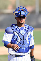 Welington Castillo. Chicago Cubs spring training workouts at Fitch Park complex, Mesa, AZ - 03/01/2010.Photo by:  Bill Mitchell/Four Seam Images.