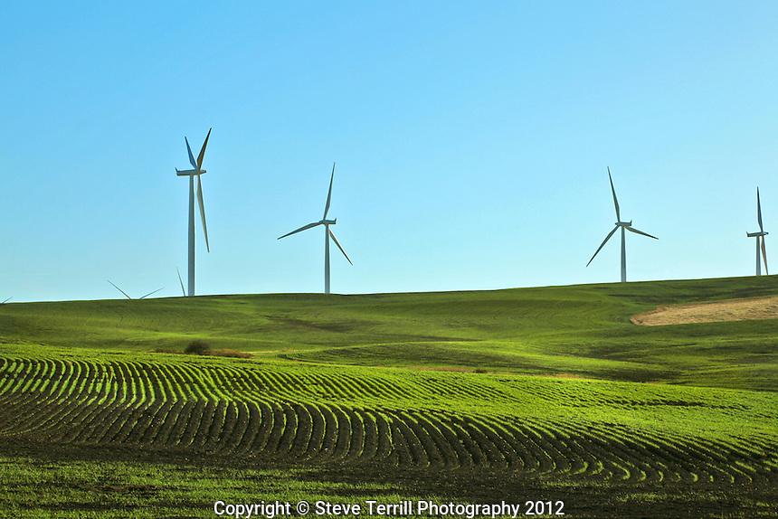 Windmills in Klickitat County Washington
