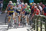 Alberto Contador (w), Alejandro Valverde (g) and Joaquin Purito Rodriguez (r) in the peloton during the stage of La Vuelta 2012 between La Robla and Lagos de Covadonga.September 2,2012. (ALTERPHOTOS/Paola Otero)