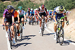 The breakaway forms during Stage 3 of La Vuelta d'Espana 2021, running 202.8km from Santo Domingo de Silos to Picon Blanco, Spain. 16th August 2021.    <br /> Picture: Luis Angel Gomez/Photogomezsport | Cyclefile<br /> <br /> All photos usage must carry mandatory copyright credit (© Cyclefile | Luis Angel Gomez/Photogomezsport)