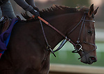 November 4, 2020: Mean Mary, trained by trainer H. Graham Motion, exercises in preparation for the Breeders' Cup Filly & Mare Turf at Keeneland Racetrack in Lexington, Kentucky on November 4, 2020. Carolyn Simancik/Eclipse Sportswire/Breeders Cup
