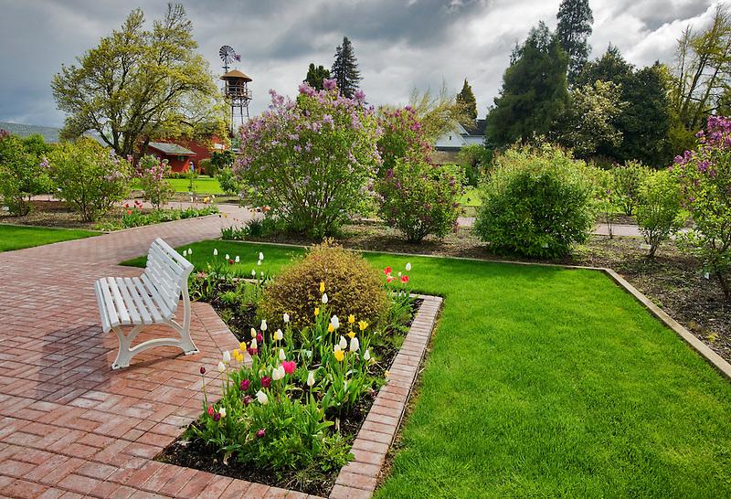 Bench and gardens at Hulda Klager Lilac Gardens, Woodland, Washington