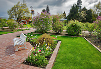 Bench and gardens at Hulda Klager Lilac Gardens, Woodland, Washington