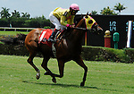 10 July 10: Tahoe Warrior (no. 1), ridden by Edgar Prado and trained by Rudy Rodriguez, wins the Bob Umphrey Turf Sprint Handicap for three year olds and upward at Calder Race Course in Miami Gardens, Florida.