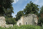 Ankerwycke  ruins of St Mary's Priory, near Wraysbury in Berkshire UK 12th century built 1160 Benedictine nunnery dissolved 1536