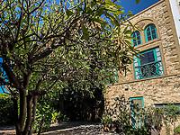 Garden and trees in the patio of Casa Oaxaca and cafe Mona in the Center of Hermosillo, Sonora.<br /> Jarin y arboles en el patio de Casa Oaxaca y cafe Mona en el Centro de Hermosillo, Sonora.