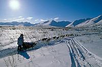 DeeDee Jonrowe In Rainy Pass Area Alaska.2004 Iditarod