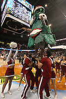 6 April 2008: Stanford Cardinal Tree and the cheerleaders during Stanford's 82-73 win against the Connecticut Huskies in the 2008 NCAA Division I Women's Basketball Final Four semifinal game at the St. Pete Times Forum Arena in Tampa Bay, FL.