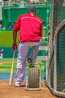 8 June 2013: Washington Nationals shortstop Ian Desmond awaits his turn in the batting cage prior to a game against the Minnesota Twins at Nationals Park in Washington, DC. The Twins edged out the Nationals 4-3 in 11 innings. Mandatory Credit: Ed Wolfstein Photo *** RAW (NEF) Image File Available ***