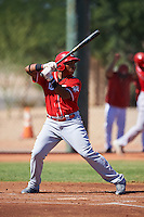 Cincinnati Reds Kevin Franklin (19) during an Instructional League game against the Chicago White Sox on October 11, 2016 at the Cincinnati Reds Player Development Complex in Goodyear, Arizona.  (Mike Janes/Four Seam Images)