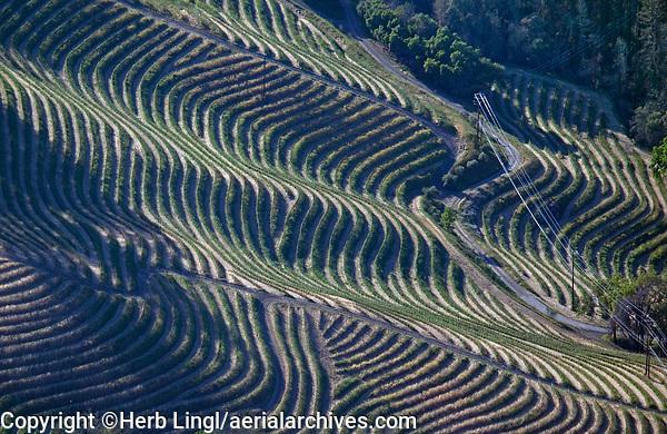 aerial photograph of mountainside Napa Valley vineyards, Mayacamas Mountains, California