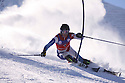 british alpine champs