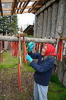 Dena'ina Athabascan elder Agnes Alexie smiles as she cuts dried red (sockeye) salmon (Oncorhynchus nerka) into strips at a fish camp on Six Mile Lake near Nondalton, Alaska, adjacent to Lake Clark National Park and Preserve, where the traditional subsistence ways of catching and preserving salmon as they return from the sea in mid July are still practiced today.  NOT FOR USE BY THE MINING INDUSTRY. MR