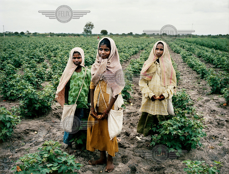 Young girls pick cotton in a field near Lingala Dinne village....