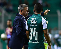 PALMIRA - COLOMBIA, 14-02-2019: Lucas Pusineri técnico del Cali da instrucciones a Cesar Amaya durante partido por la fecha 14 de la Liga Águila I 2019 entre Deportivo Cali y Deportes Tolima jugado en el estadio Deportivo Cali de la ciudad de Palmira. / Lucas Pusineri coach of Cali gives directions to Cesar Amaya during match for the date 14 as a part Aguila League I 2019 between Deportivo Cali and Deportes Tolima played at Deportivo Cali stadium in Palmira city.  Photo: VizzorImage/ Nelson Rios / Cont