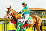 SEPT 25, 2021: Army Wife post parade for the Gr.1 Cotillion Stakes, for 3-year old fillies, going 1 1/16mile, at Parx Racing, Bensalem, PA. Sue Kawczynski/Eclipse Sportswire/CSM