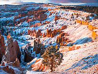 Bruce Canyon National Park, Utah after a light snow fall.