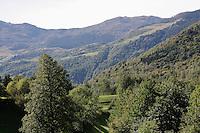 Switzerland. Canton of Ticino. Val di Blenio (Blenio valley). Village of Ponto Valentino. Forests. © 2006 Didier Ruef