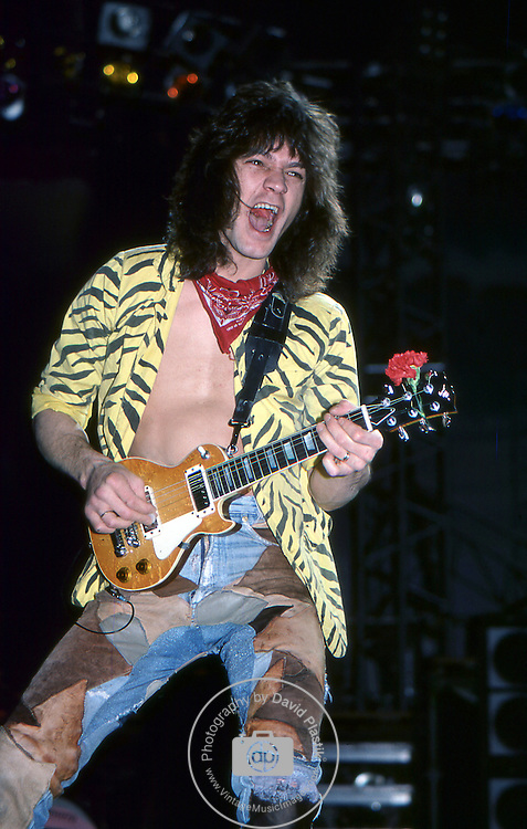 Eddie Van Halen 1984