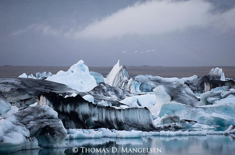 Birds fly over an iceberg, calved off the Breidamerkurjokull glacier, in Jokulsarlon, a glacial lake in Iceland.