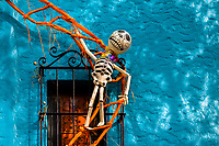 A decorated skeleton figurine is seen placed above a window during the Day of the Dead festivities in Oaxaca, Mexico, 31 October 2019. Day of the Dead (Día de Muertos), a religious holiday combining the death veneration rituals of Pre-Hispanic cultures with the Catholic practice, is widely celebrated throughout all of Mexico. Based on the belief that the souls of the departed may come back to this world on that day, people gather together while either praying or joyfully eating, drinking, and playing music, to remember friends or family members who have died and to support their souls on the spiritual journey.