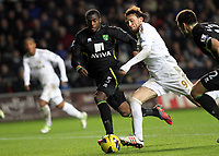 Barclays Premier League, Swansea City (White) V Norwich City (black) Liberty Stadium, Swansea, 08/12/12<br /> Pictured: Michu of Swansea<br /> Picture by: Ben Wyeth / Athena <br /> Athena Picture Agency<br /> info@athena-pictures.com