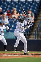 Tampa Tarpons Estevan Florial (11) bats during a Florida State League game against the Jupiter Hammerheads on July 26, 2019 at George M. Steinbrenner Field in Tampa, Florida.  Tampa defeated Jupiter 2-0.  (Mike Janes/Four Seam Images)