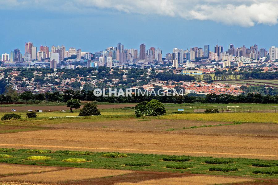 Campo de plantaçao de soja da Embrapa. Londrina. Parana. 2013. Foto de Alf Ribeiro.
