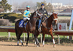 JOE VANN and jockey Florent Geroux in the post parade before the GIII TVG Illinois Derby at Hawthorne Race Course in Cicero/Stickney, IL.