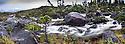 Tumbling stream and young conifers. Campania Island, Great Bear Rainforest, British Columbia, Canada.