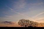 Europa, DEU, Deutschland, Nordrhein Westfalen, NRW, Rheinland, Niederrhein, Uedem, Abendstimmung, Himmel, Daemmerung, Baeume, Pappeln, Baumreihe, Pappelreihe, Kategorien und Themen, Natur, Umwelt, Landschaft, Jahreszeiten, Stimmungen, Landschaftsfotografie, Landschaften, Landschaftsphoto, Landschaftsphotographie, Wetter, Himmel, Wolken, Wolkenkunde, Wetterbeobachtung, Wetterelemente, Wetterlage, Wetterkunde, Witterung, Witterungsbedingungen, Wettererscheinungen, Meteorologie, Bauernregeln, Wettervorhersage, Wolkenfotografie, Wetterphaenomene, Wolkenklassifikation, Wolkenbilder, Wolkenfoto....[Fuer die Nutzung gelten die jeweils gueltigen Allgemeinen Liefer-und Geschaeftsbedingungen. Nutzung nur gegen Verwendungsmeldung und Nachweis. Download der AGB unter http://www.image-box.com oder werden auf Anfrage zugesendet. Freigabe ist vorher erforderlich. Jede Nutzung des Fotos ist honorarpflichtig gemaess derzeit gueltiger MFM Liste - Kontakt, Uwe Schmid-Fotografie, Duisburg, Tel. (+49).2065.677997, ..archiv@image-box.com, www.image-box.com]