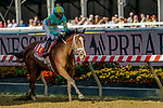 May 14, 2021: Army Wife #1, ridden by jockey Joel Rosario, wins the Black-Eyed Susan Stakes on Black-Eyed Susan Day at Pimlico Race Course in Baltimore, Maryland. Scott Serio/Eclipse Sportswire/CSM