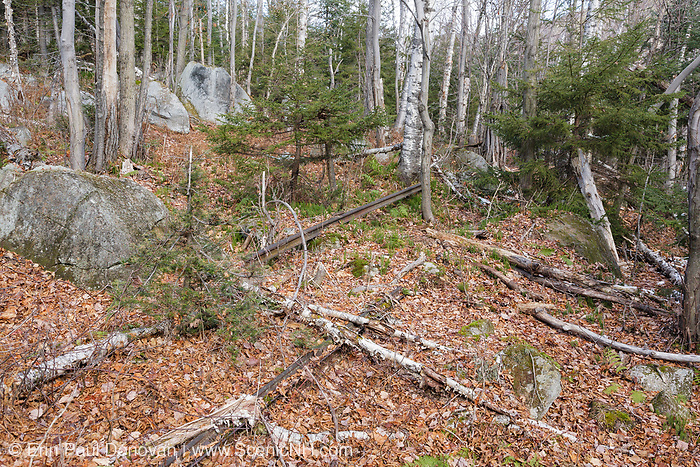 Piece of railroad track along the abandoned railroad bed, near logging Camp 12, of the Beebe River Railroad (1917-1942) in Waterville Valley, New Hampshire.