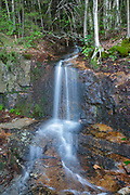 Small brook along the Lincoln Woods Trail in Lincoln, New Hampshire USA.