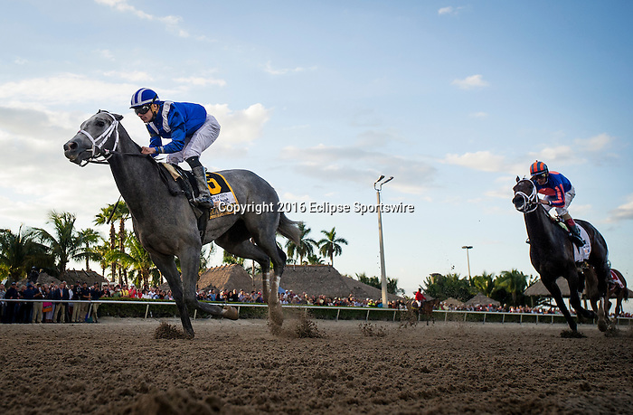 HALLANDALE FL - FEBRUARY 27: Mohaymen #6, ridden by Junior Alvarado defeats Zulu #2, ridden by John R. Velazquez to win the Xpressbet.com Fountain of Youth Stakes at Gulfstream Park on February 27, 2016 in Hallandale, Florida.(Photo by Alex Evers/Eclipse Sportswire/Getty Images)