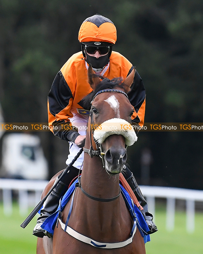 Bear Attraction ridden by Jack Mitchell goes down to the start of The British EBF Novice Stakes  during Horse Racing at Salisbury Racecourse on 11th September 2020