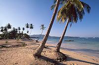 Playa Las Galeras auf der Samana-Halbinsel, Dominikanische Republik,.
