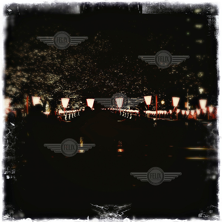 Paper lanterns at a party to celebrate the cherry blossom season in Naka-Meguro.