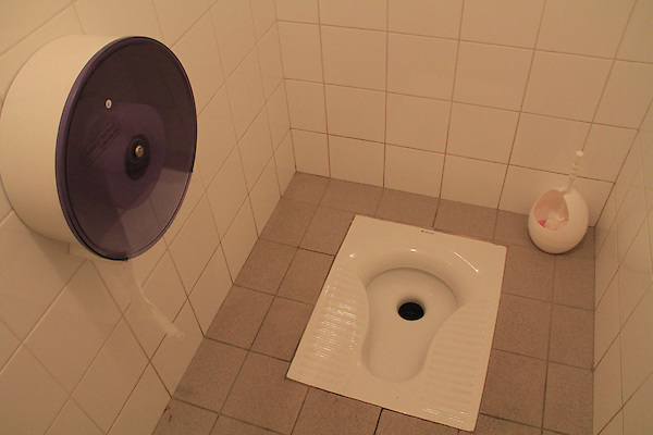 Toilet, water closet, northern Italy, Europe, bathroom,