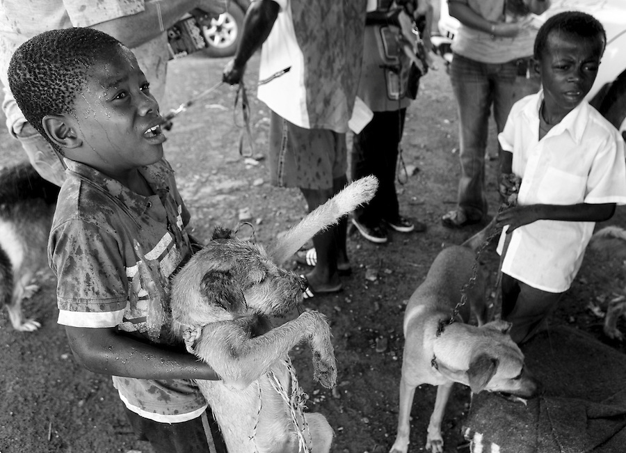 Two boys wait in the rain for their dogs to be treated at a mobile CLAW clinic in Snake Park, South Africa. IFAW's CLAW program provides veterinary services to cats and dogs in some of the poorest shantytowns outside of Johannesburg, South Africa. 2/27/12 Julia Cumes/IFAW