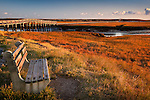 A bench provides a view of the marshland at Sandwich Boardwalk, Sandwich, Cape Cod, MA, USA