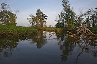 Watershed Virginia